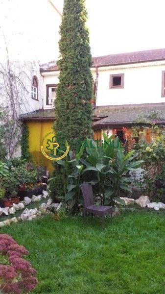 Unique home and garden , Strand area