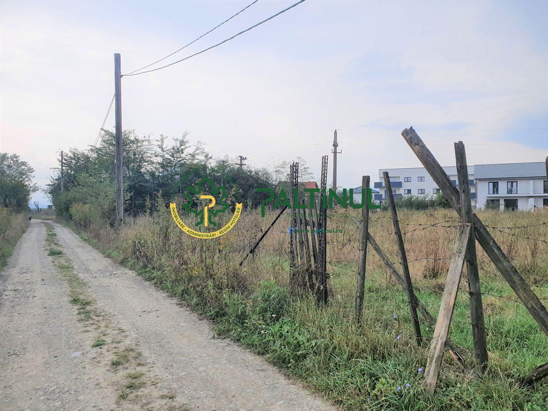 Teren 3000 mp Selimbar zona Triajului