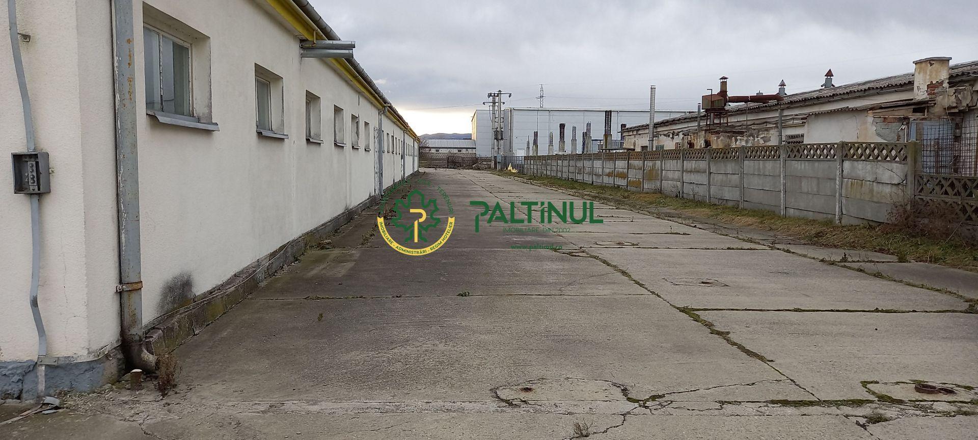 Hala, depozit, productie, spatiu comercial, zona Autostrada – Hornbach