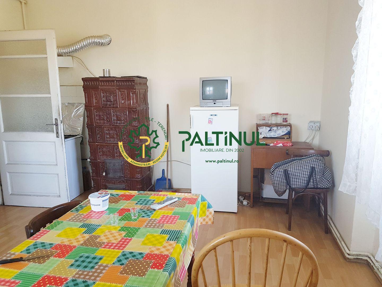 Apartament 3 canere Vasile Aaron
