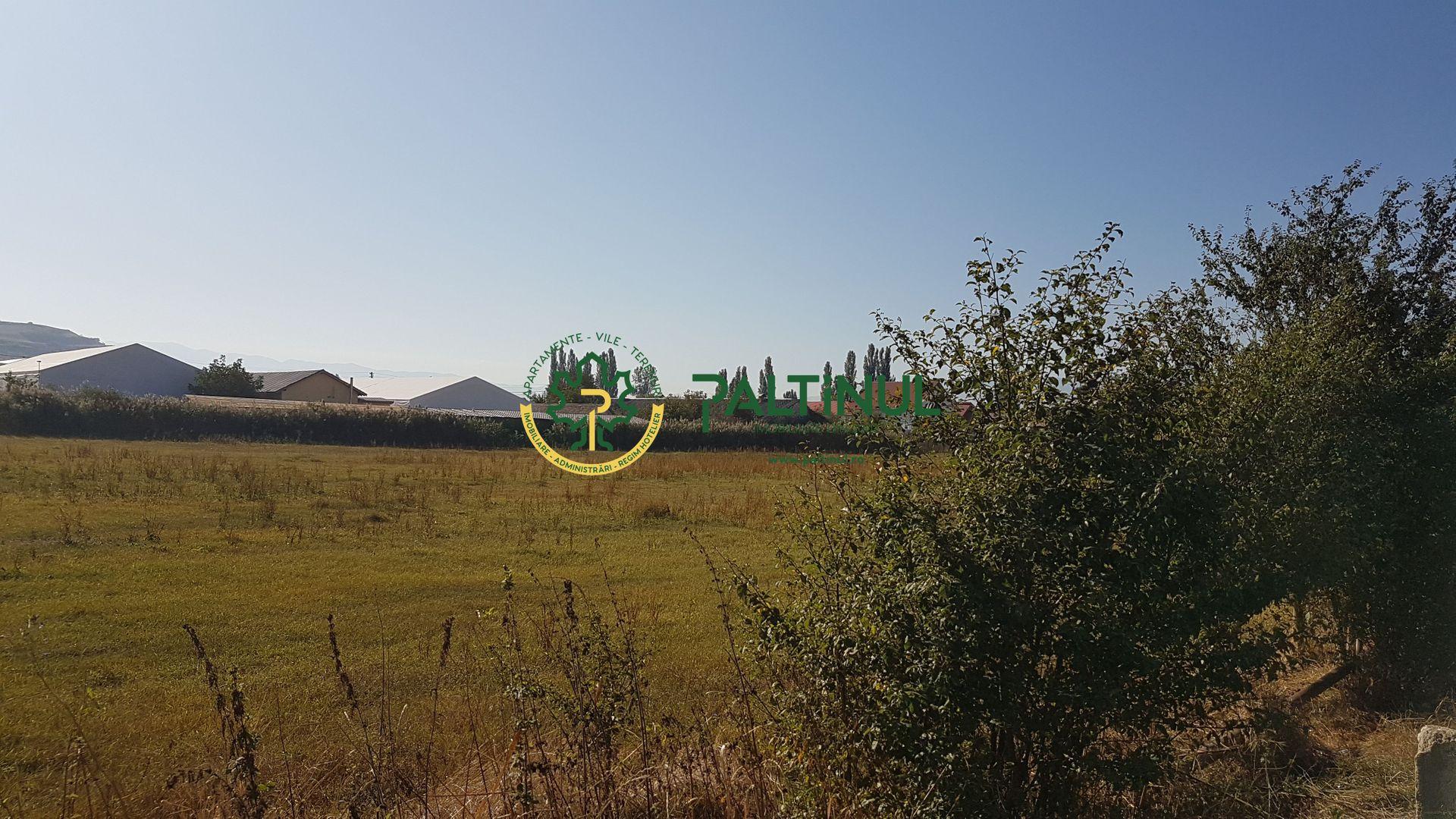Teren intravilan Viile Sibiului